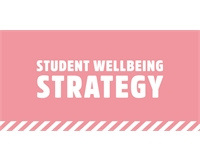 Student Wellbeing Strategy graphic.